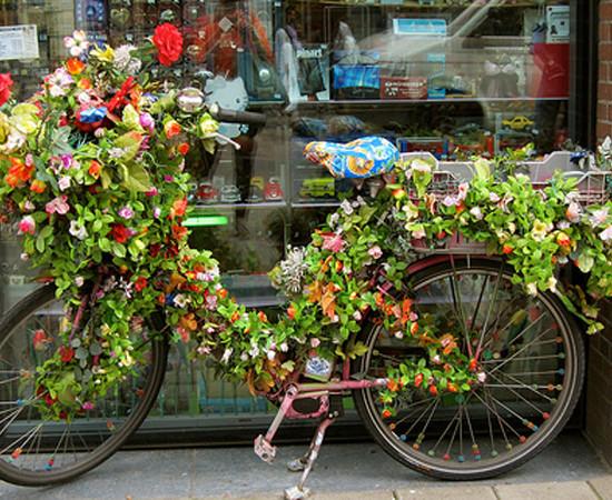 bike_amsterdan1