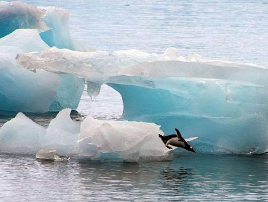 geleiras
