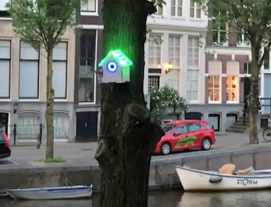 TreeWifi