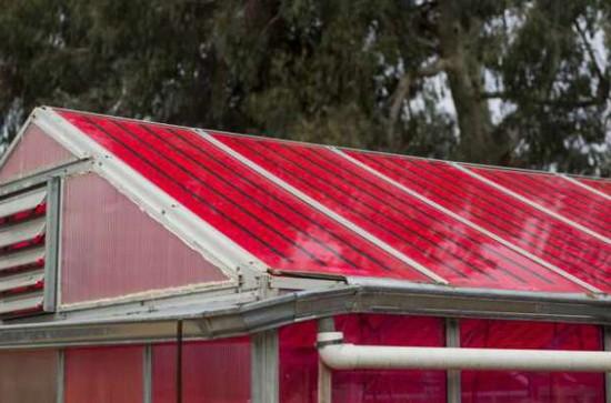 Estufa-solar-inteligente