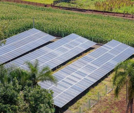 solar_cooperativas