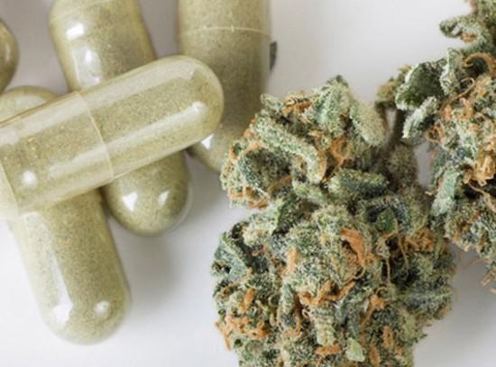maconha_medicinal4