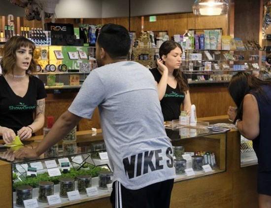 loja_cannabis_LA
