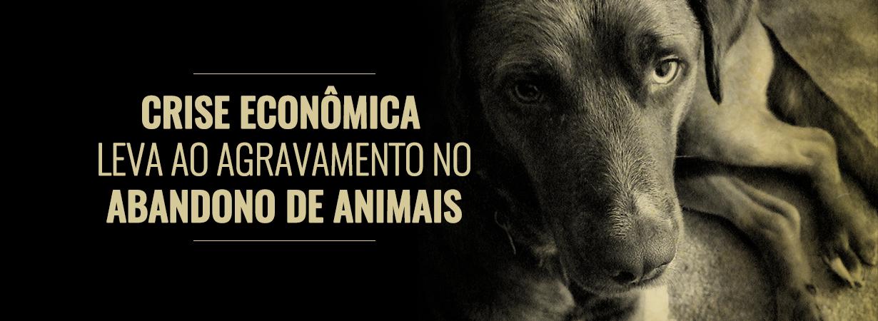 abandono_de_animais