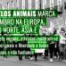 Marcha pelos animais marca o 7 de setembro na Europa, América do Norte, Ásia e Oceania