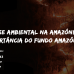 PV debate a crise ambiental na Amazônia e a importância do Fundo Amazônia