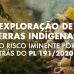 Exploração de terras indígenas: o risco iminente por trás do PL 191/2020