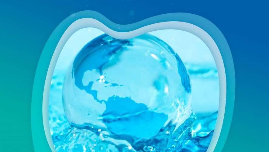 Hora do Planeta: 60 minutos para refletir e 365 dias para agir
