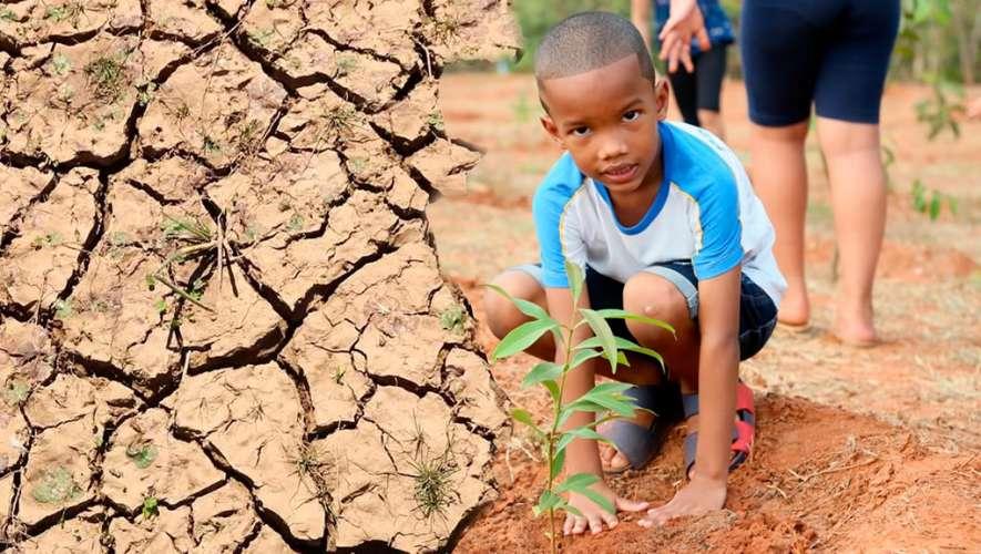 """Desertificação: """"Nós somos capazes de mitigar esse cenário"""""""