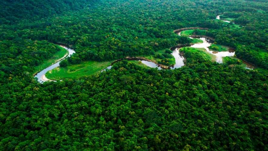 Estudos Amazônicos: alta procura por curso inédito da UnB traz esperança